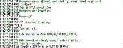 Terminal Font problem-good-jpg