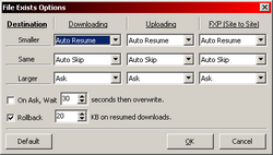 File Exists Options-image1-png